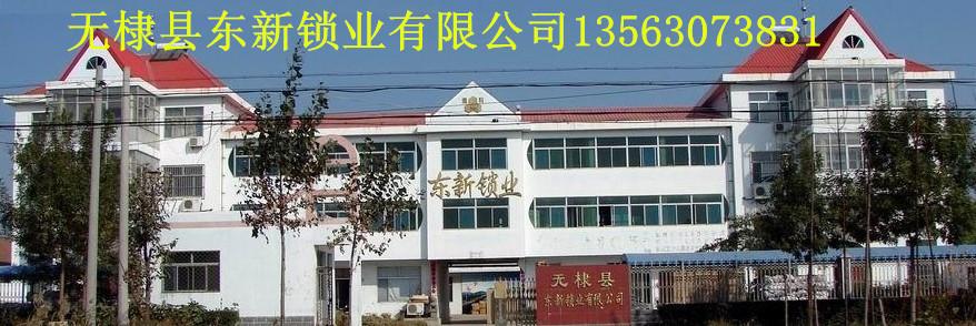 无棣县东新锁业有限公司大门