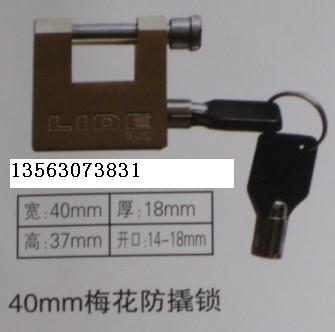 40mm梅花防撬表箱挂锁,电力表箱专用通开挂锁,铜挂锁